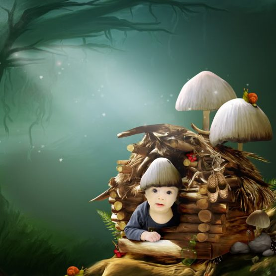 Fairy Forest Layout 23